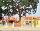 Ninh Bình: Xã nghèo vượt khó đạt chuẩn nông thôn mới