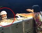 Truy tìm nghi phạm, tang vật vụ cướp tiệm vàng táo tợn tại Bình Dương