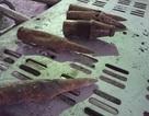 Vụ nổ lớn ở Bắc Ninh: Bàng hoàng phát hiện thêm 1 kho chứa đầu đạn