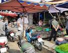TPHCM: Cá lóc đồng tăng giá gấp 3 sau Tết