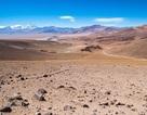 Cơn mưa bão hiếm đánh thức vi khuẩn chưa chết ở Sa mạc Atacama của Chile