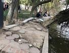 Vỉa hè hồ Hoàn Kiếm lem nhem gạch đá bong tróc