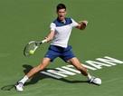 Indian Wells 2018: Federer vào vòng ba, Djokovic sớm bị loại