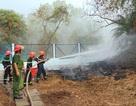 Nắng nóng đe dọa, Bạc Liêu gấp rút diễn tập chữa cháy vườn chim