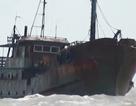 Trục vớt tàu nghi của nước ngoài chìm trên vùng biển Bạc Liêu