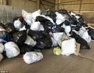 """Mỹ: Bới 10 tấn rác để tìm lại trang sức trăm nghìn """"đô"""""""