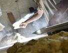 Pháp: Bị phạt tiền vì làm việc quá chăm chỉ