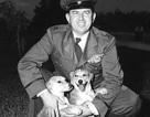 Cuộc đời thăng trầm của một bậc thầy điệp viên Mỹ trong cuộc chiến tranh Triều Tiên
