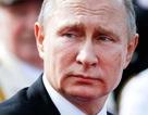"""Ông Putin hé lộ giây phút """"cân não"""" trong vụ khủng bố làm 130 người chết"""