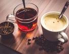 Đây là lý do vì sao trà và cà phê không gây mất nước cho cơ thể