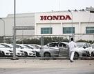 Honda Việt Nam tăng giá xe CR-V trong tháng 4