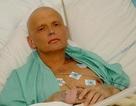 Cha cựu điệp viên Nga Litvinenko ôm người từng bị nghi hạ độc con mình