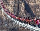 Rợn người trước cảnh du khách chen chân trên cầu đáy kính dài nhất thế giới