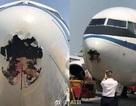 Máy bay Trung Quốc thủng đầu vì va chạm với chim trên không