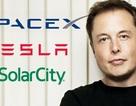 Elon Musk hối tiếc vì đã lơ là quản lý hãng xe điện Tesla