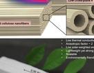 Gỗ nano có thể giảm phát thải cacbon