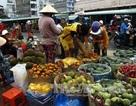 Đại biểu Quốc hội giám sát quy hoạch chợ nông sản đầu mối