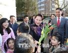Chủ tịch Quốc hội gặp gỡ cán bộ Đại sứ quán và đại diện cộng đồng người Việt Nam tại Hà Lan