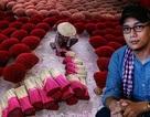 Tác phẩm của nhiếp ảnh gia người Việt được xem nhiều nhất lịch sử cuộc thi Smithsonian