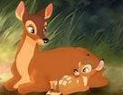 Tại sao các nhân vật hoạt hình kinh điển đều… mồ côi mẹ