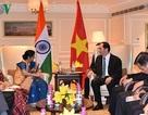 Chủ tịch nước Trần Đại Quang gặp gỡ nhiều lãnh đạo cấp cao Ấn Độ