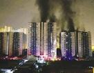 Cháy chung cư Carina: Tất cả có phải là do bất cẩn?