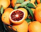 Những thực phẩm ăn thoải mái không lo tăng cân