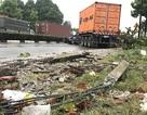 Xe container tông đổ 2 cây xanh, tài xế tử vong tại chỗ