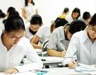 Vì sao giáo viên áp lực khi bồi dưỡng học sinh giỏi?