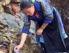 Thực hư thông tin mó nước chữa bách bệnh tại Sơn La