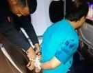 Bắt hành khách khỏa thân xem phim sex, làm náo loạn máy bay
