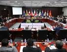 Bộ Công Thương: Doanh nghiệp Việt cần tận dụng lợi thế của CPTPP  Kinh tế