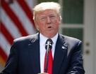 Ông Trump tính bổ nhiệm quan chức đặc biệt về Triều Tiên