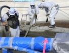 Nhật Bản điều tra vụ thực tập sinh Việt Nam tố bị lừa dọn phóng xạ ở Fukushima