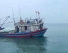 Cứu thành công tàu cá cùng 9 ngư dân gặp nạn trên biển