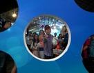 Nhiều chương trình khuyến mại hấp dẫn trong ngày khai mạc Hội chợ du lịch