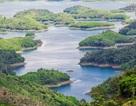 Độc đáo hàng chục đảo nổi giữa cao nguyên M'Nông