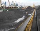 Tập đoàn Than-Khoáng sản VN:  Lượng than tiêu thụ 11 tháng đã vượt kế hoạch năm