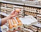 Vi khuẩn gây tiêu chảy Salmonella xâm nhập vào trứng gà như thế nào?