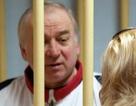 Nga nghi Anh cố tình làm cha con cựu điệp viên hôn mê tạm thời
