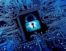 """Microsoft cùng loạt """"ông lớn"""" công nghệ hợp tác để chống lại các cuộc tấn công mạng"""