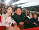 """Ông Kim Jong-un """"phá lệ"""" xem sao Hàn Quốc biểu diễn"""