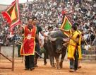 Sẽ tạm dừng 3 lễ hội chọi trâu Phù Ninh, Hải Lựu và Đồ Sơn...?