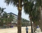 Du lịch biển Hải Tiến không chạy theo số lượng, không kinh doanh chụp giật