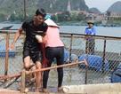 Rộn ràng hội thi cá trắm, đua thuyền ở di sản Phong Nha - Kẻ Bàng