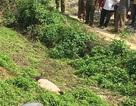 Bắt được nghi phạm giết con trai người tình ở Lạng Sơn
