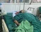 3 người cùng một gia đình tử vong vì ăn phải nấm độc