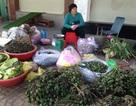 Lặng lẽ ở chợ bán lá trầu, trái cau