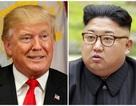 Tổng thống Trump gợi ý gặp ông Kim Jong-un ở biên giới liên Triều