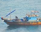 Điều tra tàu gỗ dùng thuốc nổ đánh bắt cá trên vịnh Đà Nẵng